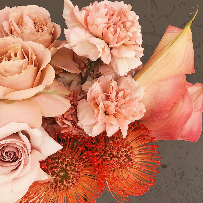 Blume_13